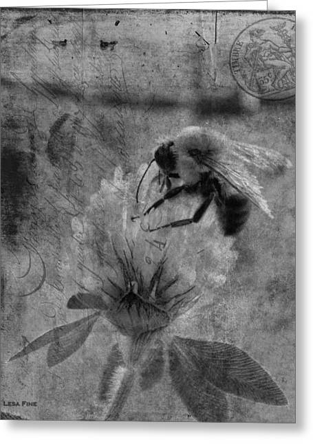 Fine Greeting Cards - Bumble Bee Post Card 2 BW Greeting Card by Lesa Fine