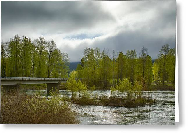 North Fork Greeting Cards - Bumblebee Bridge Greeting Card by Idaho Scenic Images Linda Lantzy