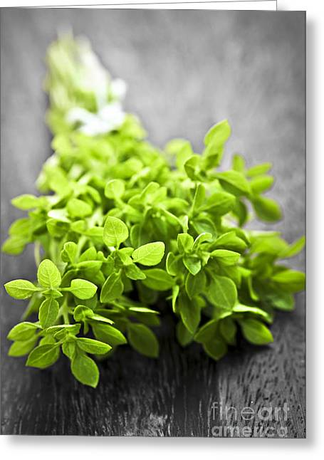 Culinary Photographs Greeting Cards - Bunch of fresh oregano Greeting Card by Elena Elisseeva