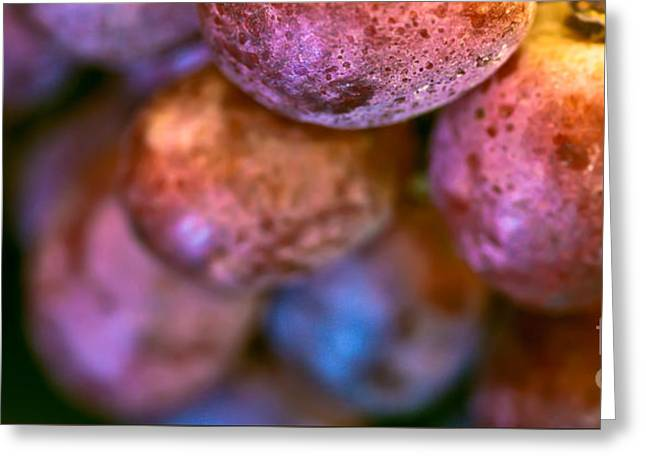 Bunch Of Grapes Greeting Cards - Bunch of Grapes Panorama Greeting Card by Patricia Bainter
