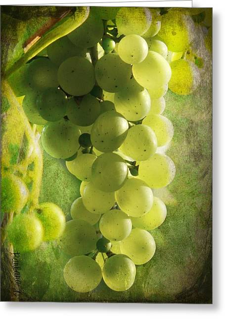 Vinegar Greeting Cards - Bunch of yellow grapes Greeting Card by Barbara Orenya