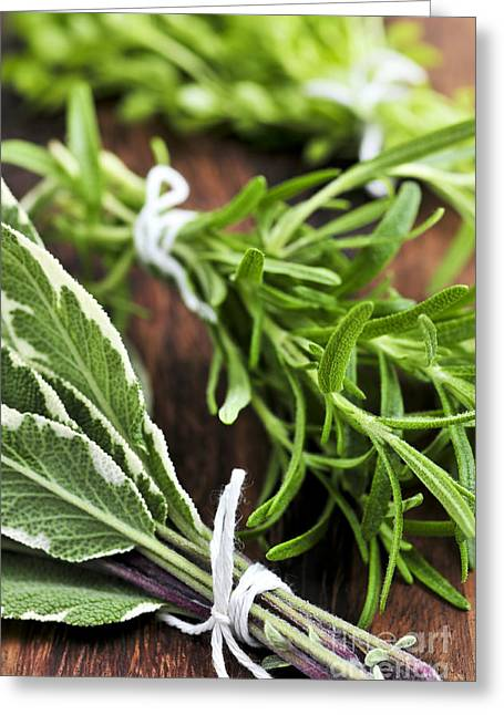 Flavor. Greeting Cards - Bunches of fresh herbs Greeting Card by Elena Elisseeva