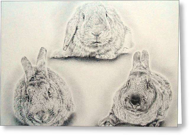 Animals Love Drawings Greeting Cards - Bunny Triangle Greeting Card by Heidi Vormer