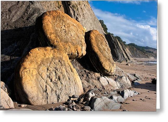 Photorealism Greeting Cards - Buns on the beach Greeting Card by Kathleen Bishop