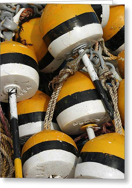 Cindi Ressler Greeting Cards - Buoys Greeting Card by Cindi Ressler