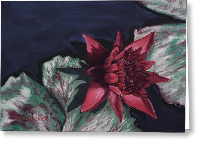 Burgundy Pastels Greeting Cards - Burgundy Water Lily Greeting Card by Angela Bruskotter