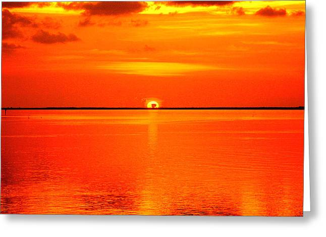 Gilberto Greeting Cards - Burn by the Sun Greeting Card by Gilberto Gutierrez