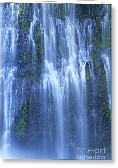 Flowing Wells Greeting Cards - Burney Falls Mist McArthur Burney SP California  Greeting Card by Dave Welling