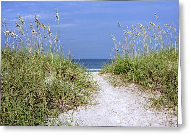 """""""sand Dunes Greetings Card"""" Greeting Cards - Burney Park Greeting Card by Maria  Struss"""