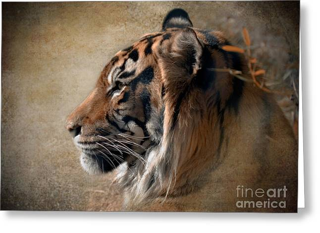 """wild Cat"" Greeting Cards - Burning Bright Greeting Card by Betty LaRue"