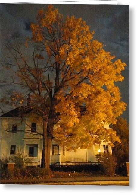 Photos Of Autumn Greeting Cards - Burning Leaves at Night Greeting Card by Guy Ricketts