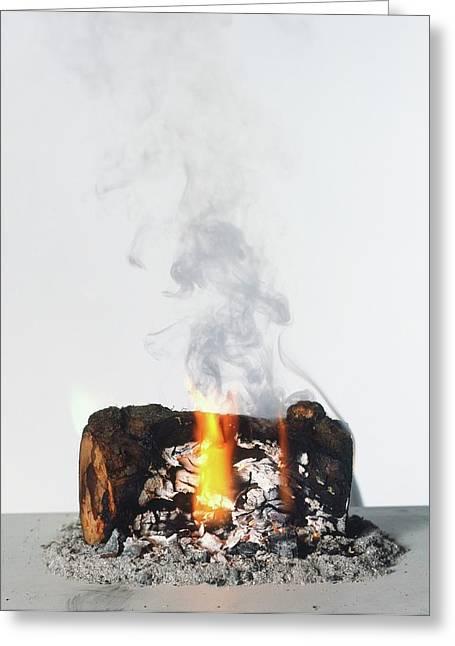 Burning Log Greeting Card by Dorling Kindersley/uig