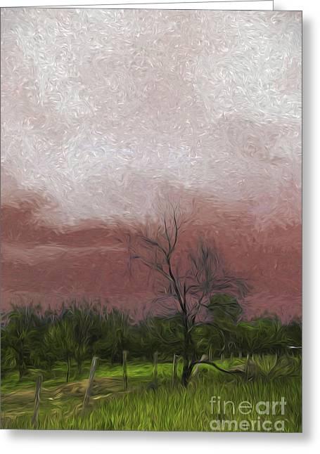 Bushfire Greeting Cards - Burning sky Greeting Card by Sheila Smart