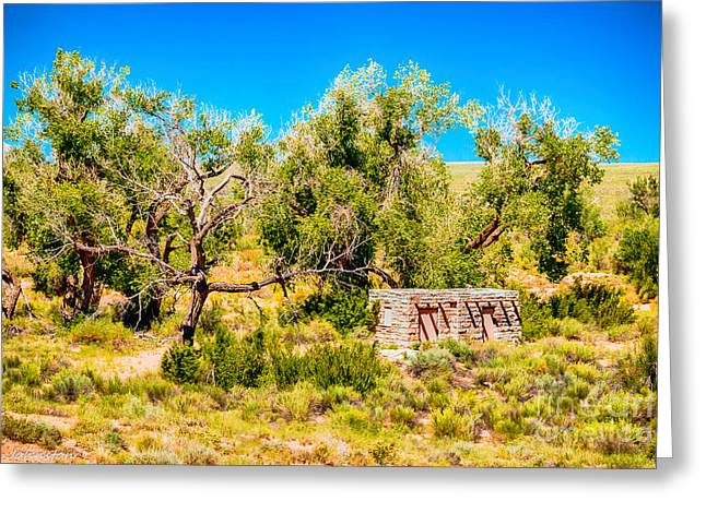 Spider Rock Art Greeting Cards - Burried in the Desert a Home Greeting Card by  Bob and Nadine Johnston