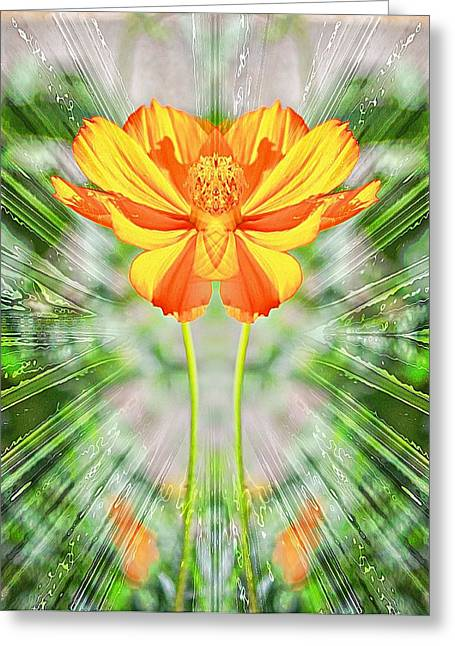 Pictures Of Oregon Greeting Cards - Burst Greeting Card by Cathie Tyler