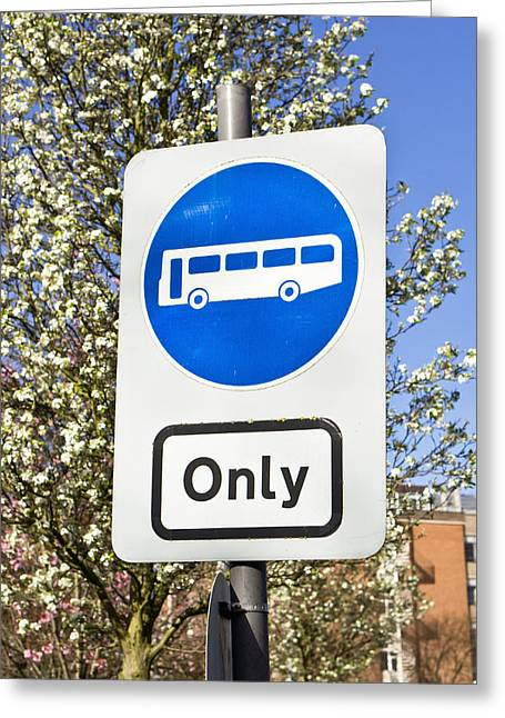 Spring Street Greeting Cards - Bus only Greeting Card by Tom Gowanlock