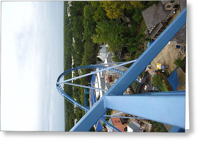 Green Greeting Cards - Busch Gardens - 121214 Greeting Card by DC Photographer