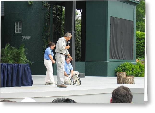Parks Greeting Cards - Busch Gardens - Animal Show - 121213 Greeting Card by DC Photographer