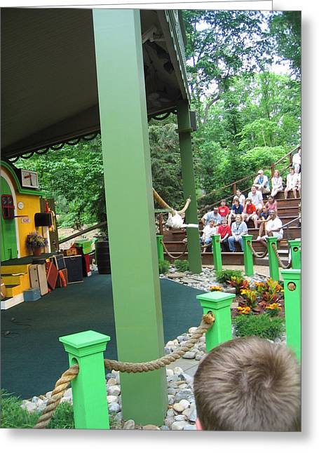 Coaster Greeting Cards - Busch Gardens - Animal Show - 121235 Greeting Card by DC Photographer