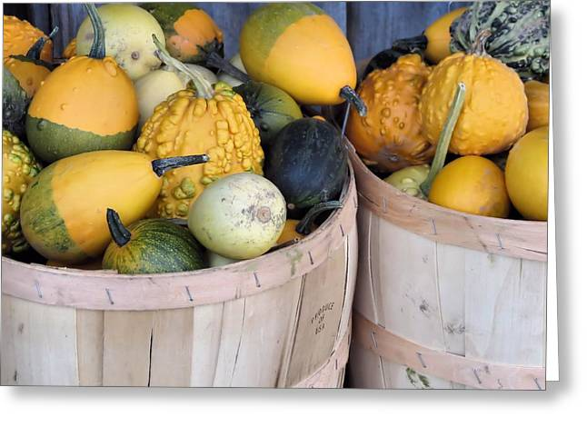 Farmstand Greeting Cards - Bushels of Gourds Greeting Card by Janice Drew
