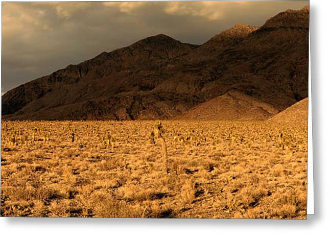 Mojave Desert Greeting Cards - Bushes In A Desert With Mountain Range Greeting Card by Panoramic Images