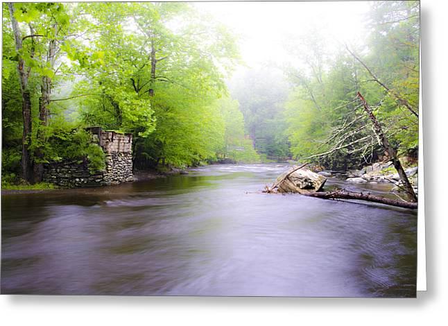 Stream Digital Greeting Cards - Bushkill Creek Greeting Card by Bill Cannon