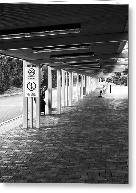 Busstop Greeting Cards - Busstop Peaking Greeting Card by Paul Donohoe