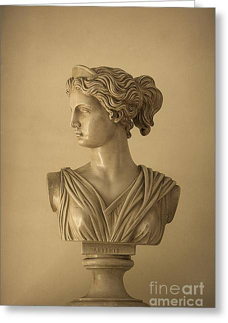 Huntress Greeting Cards - Bust of Artemis Greeting Card by Diane Diederich