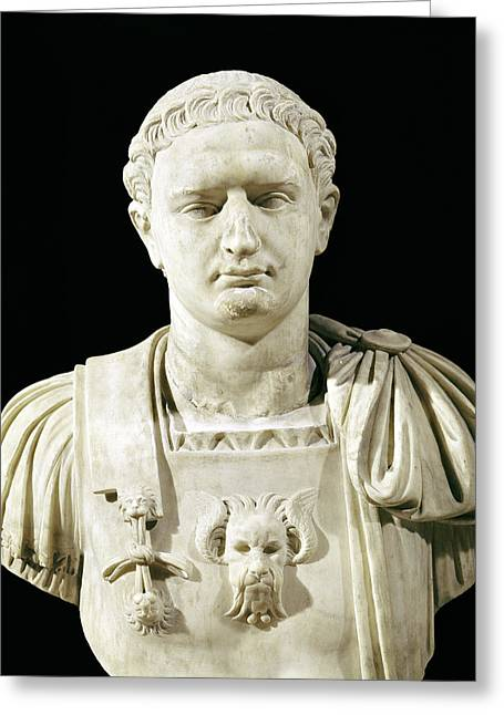 Marble Sculptures Greeting Cards - Bust of Emperor Domitian Greeting Card by Anonymous