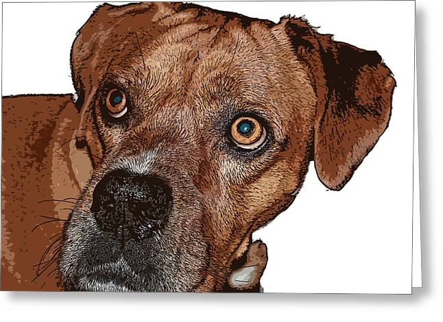 Buster Brown the Boxer Greeting Card by Sandra Clark