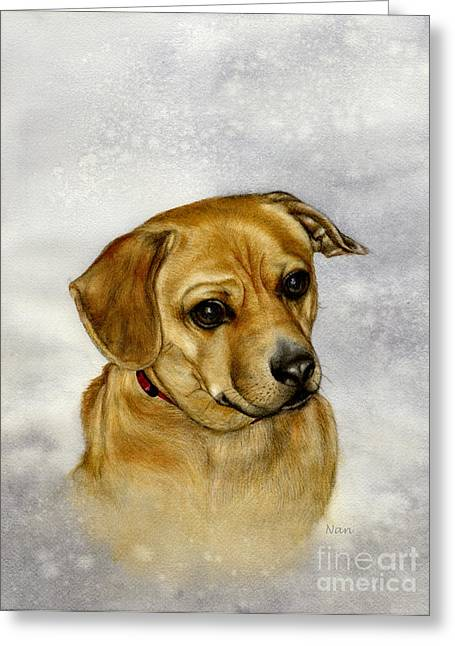 Buster Greeting Card by Nan Wright