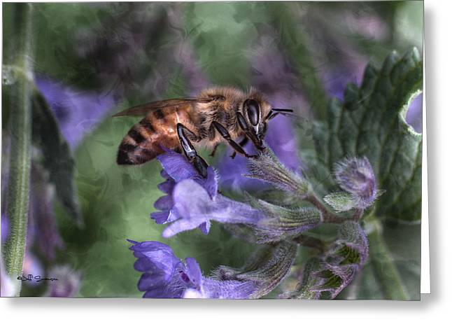 Busy As A Bee Greeting Card by Jeff Swanson
