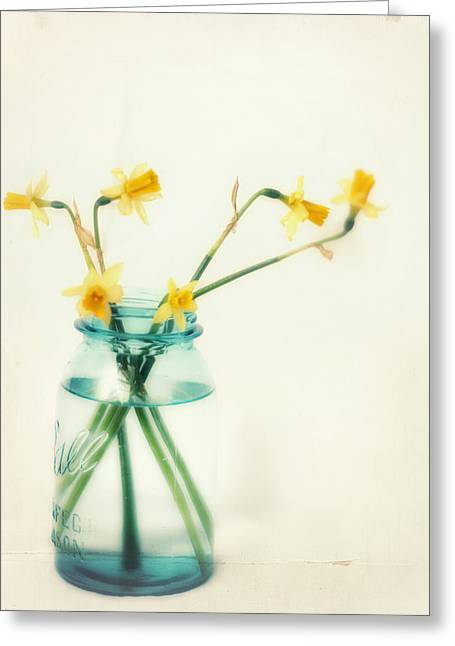 Daffodil Greeting Cards - But I Love You Still Greeting Card by Amy Tyler