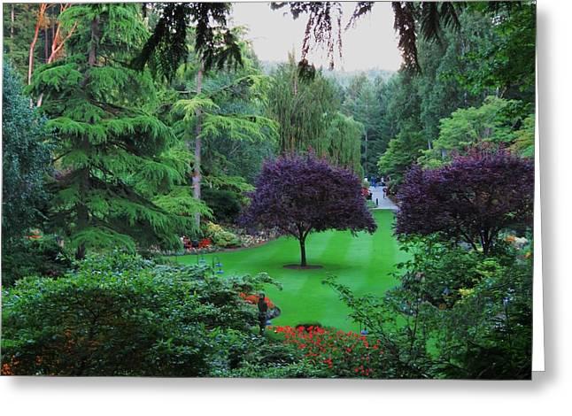 Butchart Gardens Greeting Cards - Butchart Gardens 1 Greeting Card by Vijay Sharon Govender