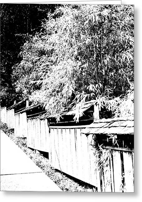 Bamboo Fence Greeting Cards - Butchart Gardens Fence Image Greeting Card by Paul Price
