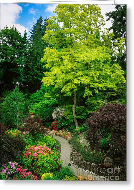 British Columbia Greeting Cards - Butchart Gardens Pathway Greeting Card by Inge Johnsson