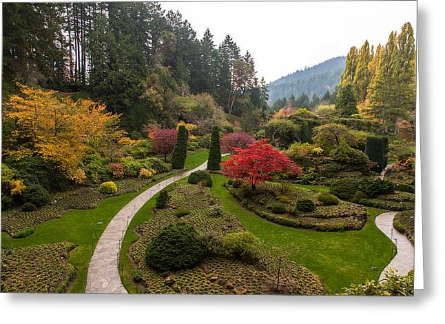 Victoria Johns Greeting Cards - Butchart Sunken Gardens Greeting Card by John Daly