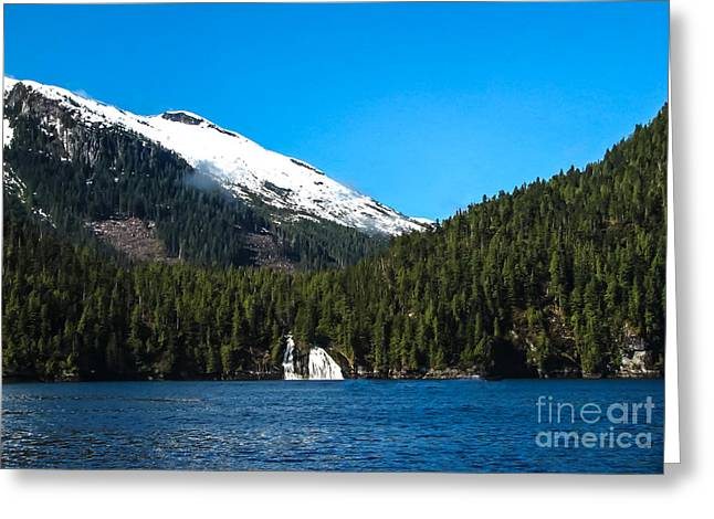 Bc Coast Greeting Cards - Butedale Falls Greeting Card by Robert Bales