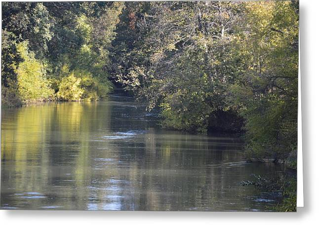 Colusa Greeting Cards - Butte Creek Greeting Card by Brenda Bebensee