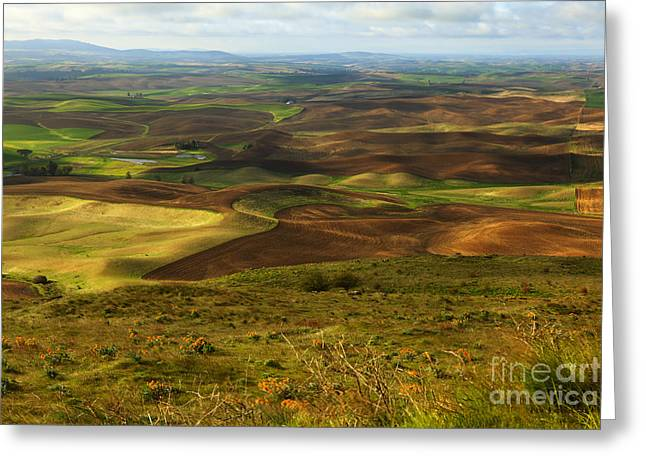 Dappled Light Photographs Greeting Cards - Butte with a View Greeting Card by Reflective Moment Photography And Digital Art Images