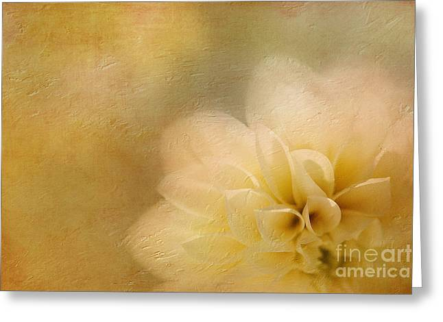 A New Focus Photography Greeting Cards - Buttercream Dream Greeting Card by A New Focus Photography