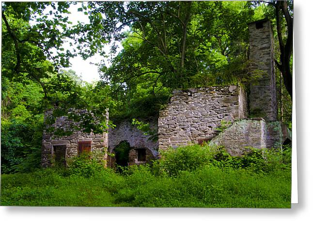Mt. Airy Greeting Cards - Buttercup Cottage Barn Ruin Greeting Card by Bill Cannon