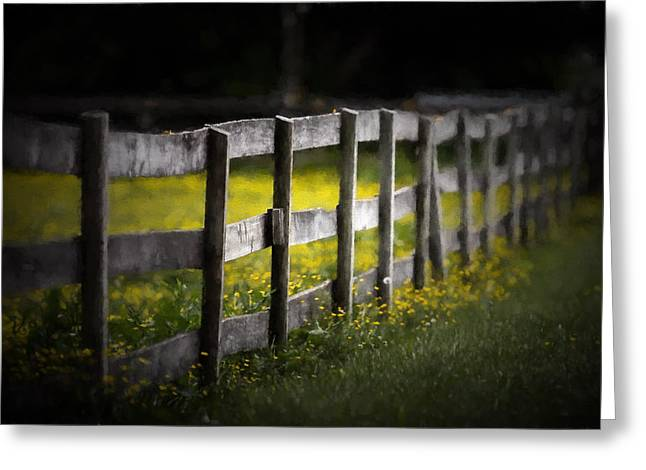 Crooked Fence Greeting Cards - Buttercup Fence Line Greeting Card by Earl Ball