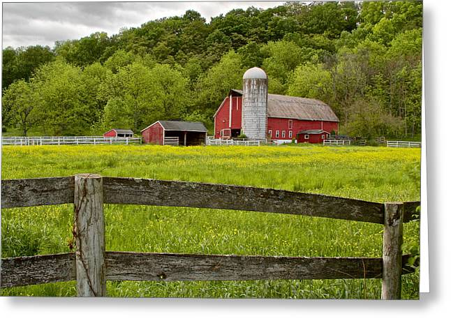 Chiara Greeting Cards - Buttercup Field Farm Hope New Jersey Greeting Card by Rocco Chiara