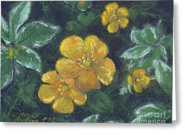 Bright Pastels Greeting Cards - Buttercups and Bishops Greeting Card by Grace Goodson