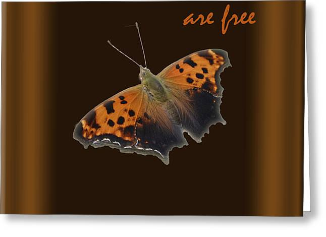 Butterflies are Free Greeting Card by Larry Bishop