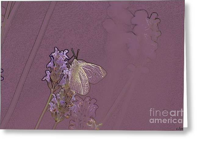 Abstract Butterfly Prints Greeting Cards - Butterfly 1 Greeting Card by Carol Lynch