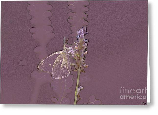 Butterfly 3 Greeting Card by Carol Lynch