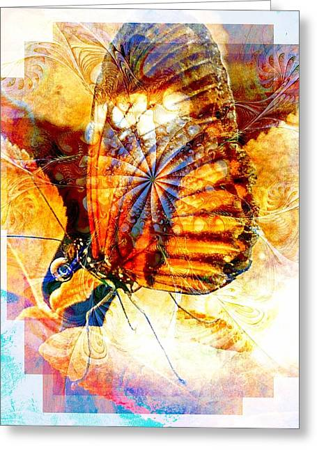 Digital Media Greeting Cards - Butterfly 6 Greeting Card by Amanda Moore