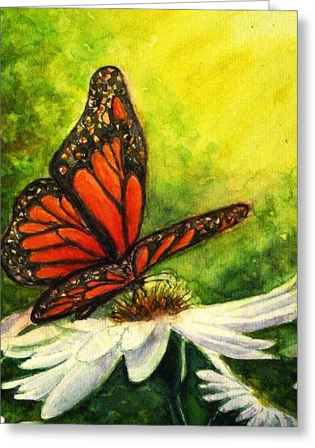 Sunlight On Flowers Greeting Cards - Butterfly and Daisy Greeting Card by Hazel Holland